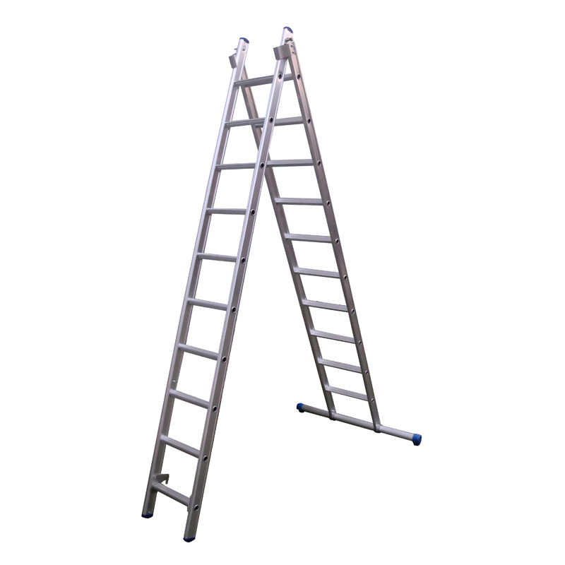 Rechte Ladder Reform